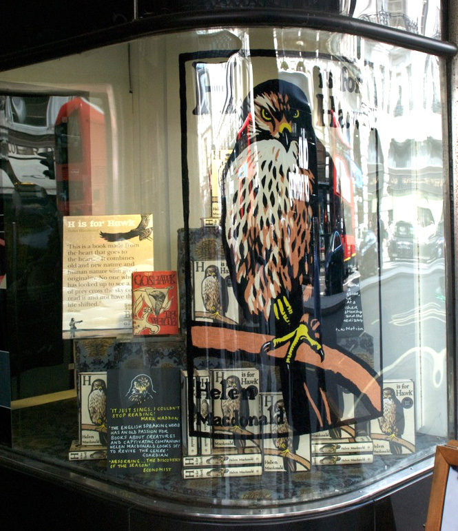 Chris Wormell 'H is for Hawk' for Waterstones Piccadilly