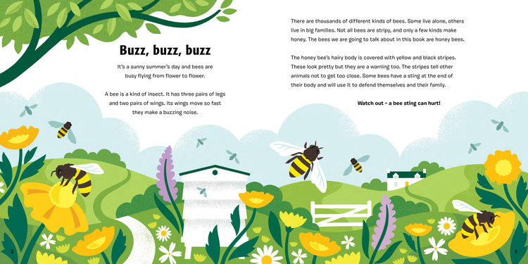 A Bee-autiful childrens' book about Bees illustrated by Lucy Davey