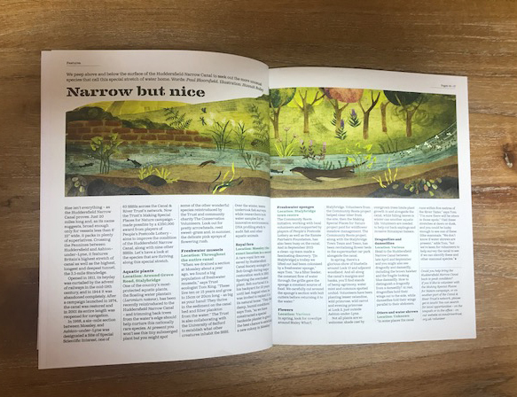 Hannah Bailey's illustrates a beautiful spread about the Huddersfield Canal for Waterfront Magazine