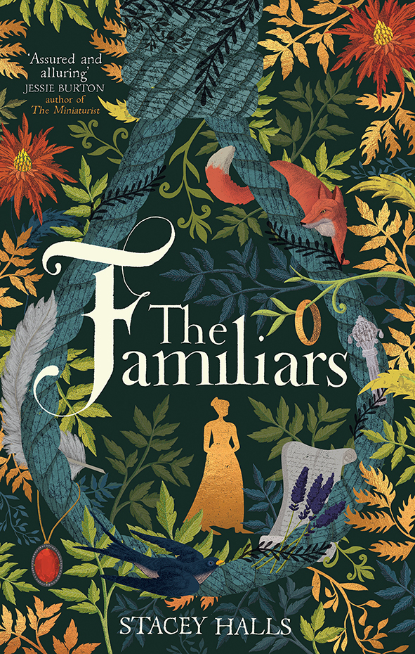 Lucy Rose creates a stunning illustration for the cover for Stacey Halls new novel, The Familiars