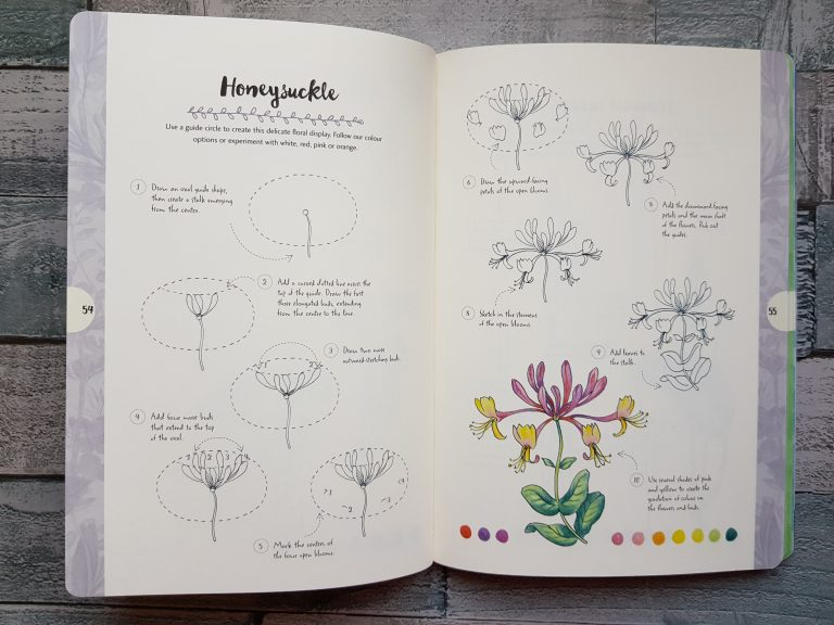 Mary Woodin's 10 simple steps to drawing nature.