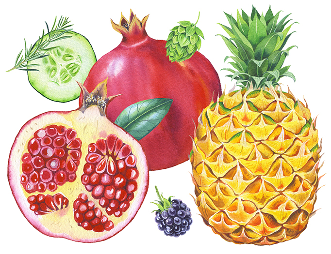 Mary Woodin captures the healthy glow of good fruit for KeVita